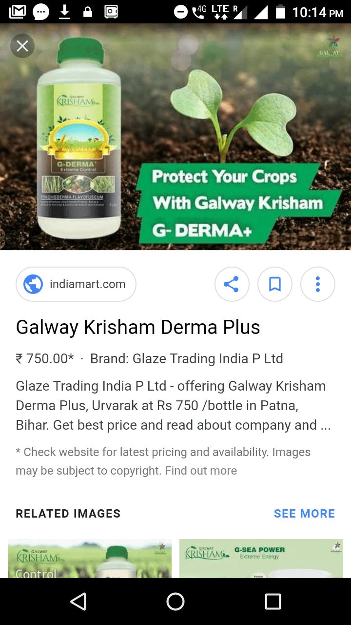 Galway Krisham Logo Png